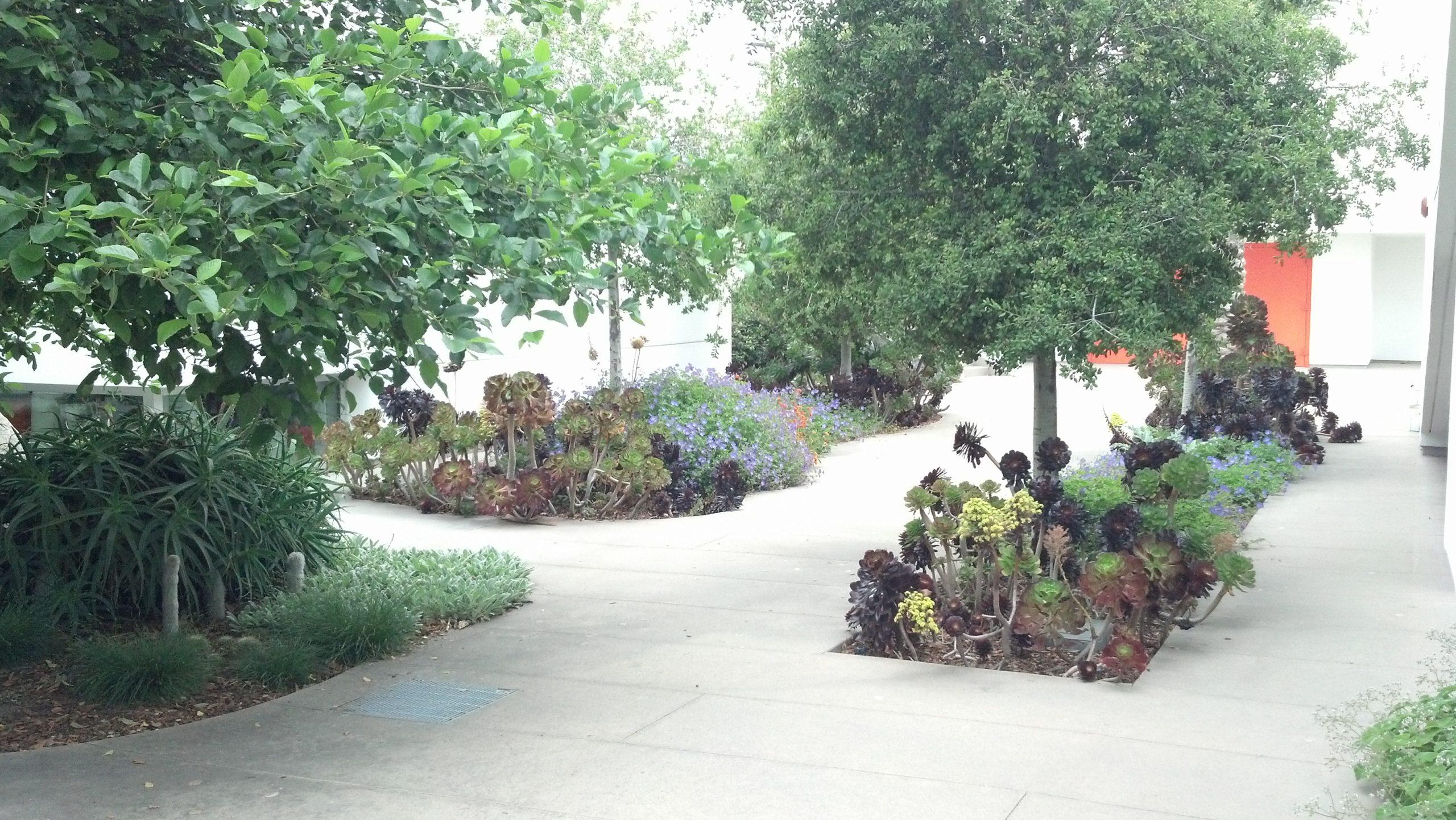 Landscape Design Tendla